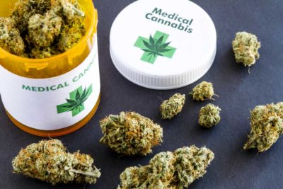 how to renew medical marijuana card